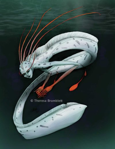 Oarfish with the upper torso and face of a woman